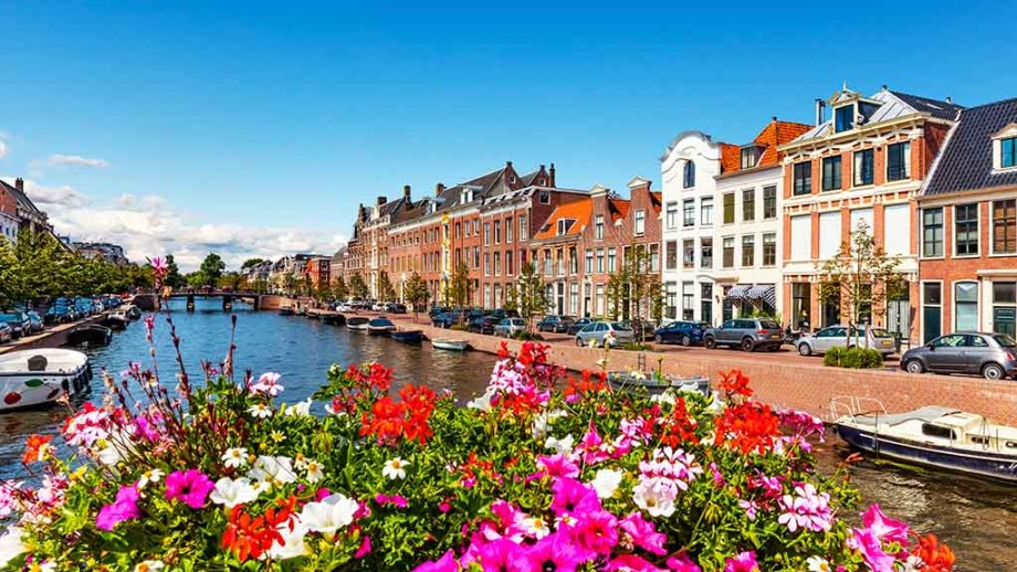must-do-see-activities-in-one-day-in-haarlem-holland-netherlands